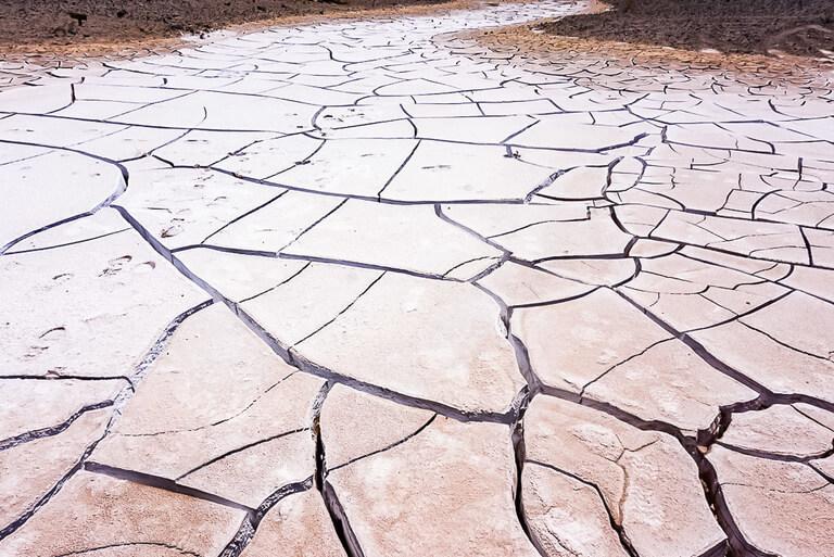 snaking dried ground full of deep cracks