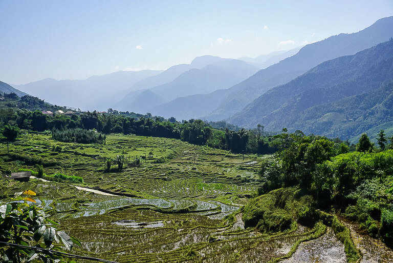 Emerald green Sapa valley waterlogged terraces trekking vietnam