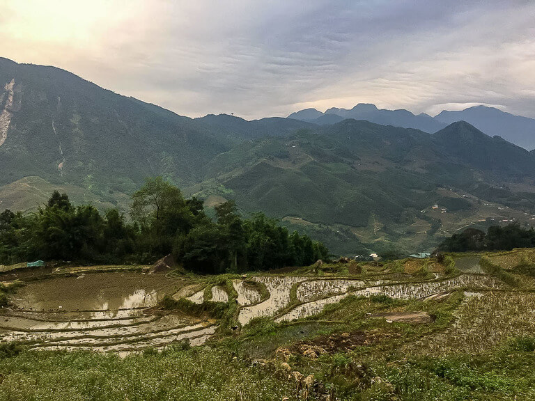 rice paddies October sapa itinerary vietnam