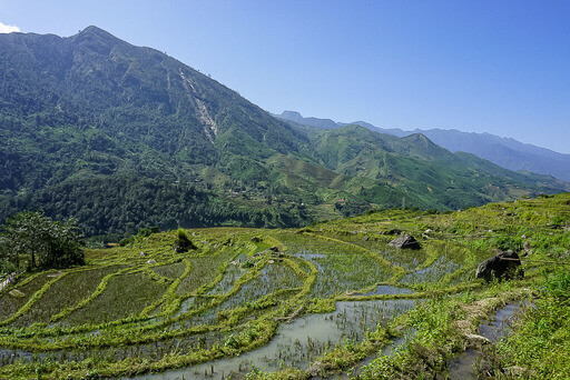 waterlogged rice fields on valley slope sapa itinerary vietnam