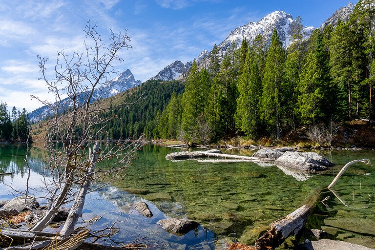 Grand Tetons lake trees and mountains stunning scenery