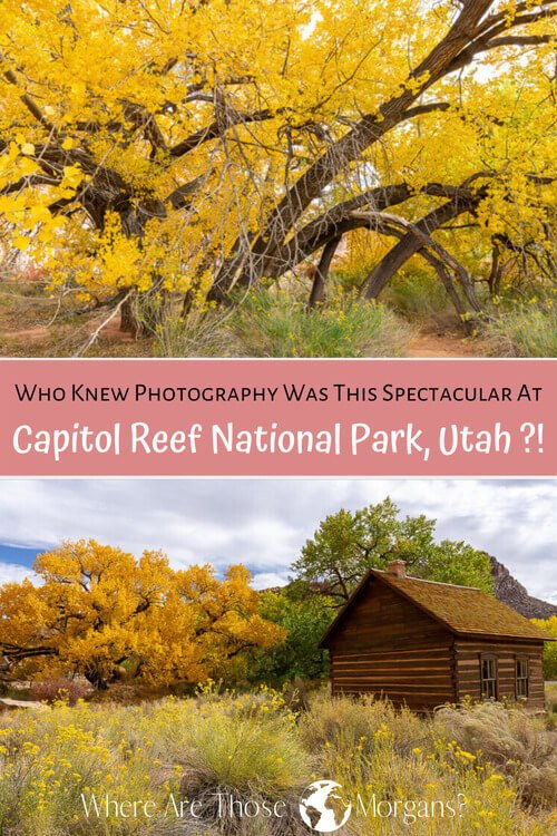 Who Knew Photography Was This Spectacular At Capitol Reef National Park Utah?!
