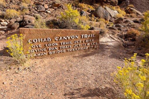 Cohab Canyon Trail head Utah