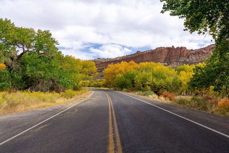 Empty open road with green orange and yellow leaves both sides