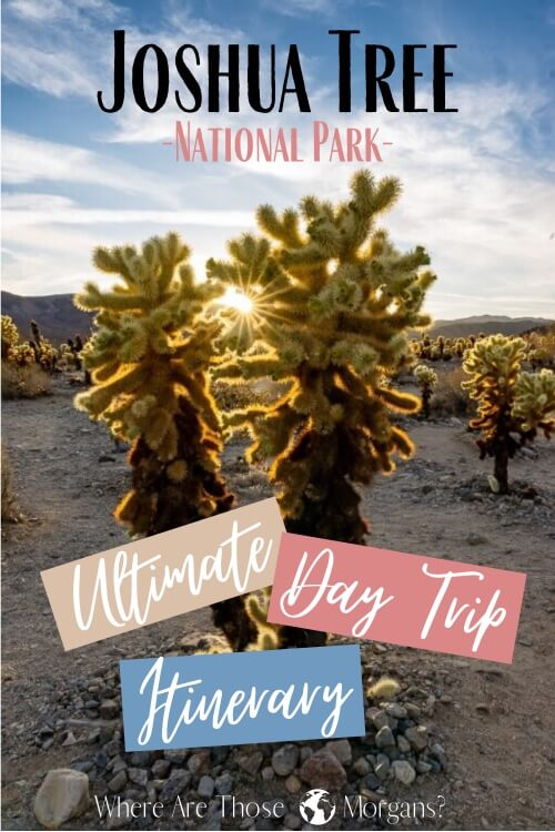 Joshua Tree National Park Ultimate Day Trip Itinerary