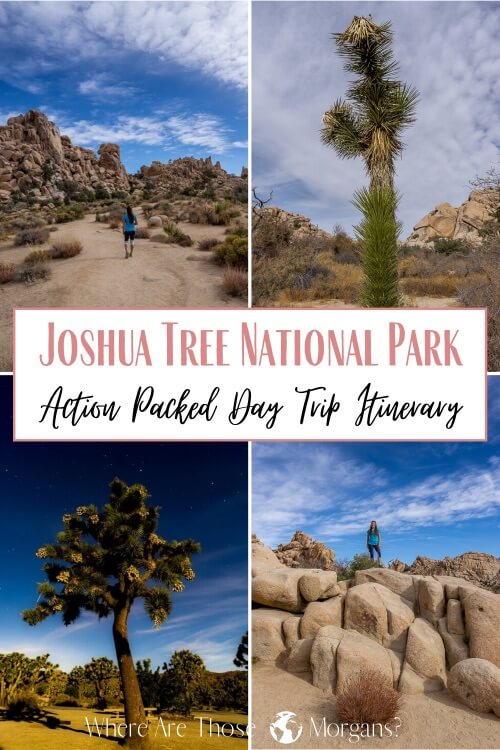 Joshua Tree National Park Action packed Day Trip Itinerary