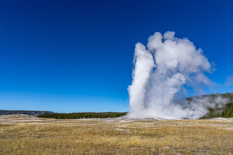 Old faithful spurting hot steam into the air at yellowstone national park