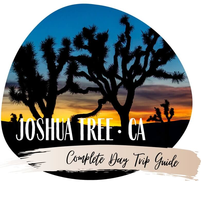 Joshua Tree national park California day trip itinerary usa road trip