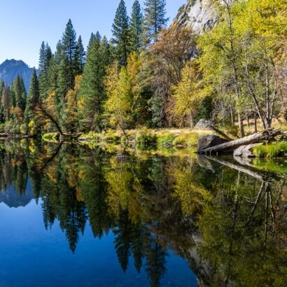 Yosemite fall colors trees reflecting in clear blue water
