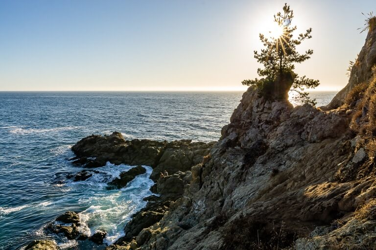 Partington Cove is an unusual short hiking trail from California's pacific coast highway leading to a rough sea cove with rocks to climb