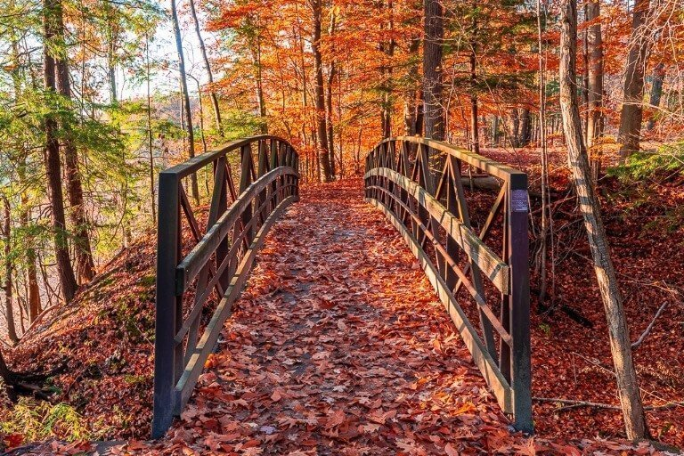 Hiking trails at letchworth state park in new york bridge and beautiful fall colors on the ground