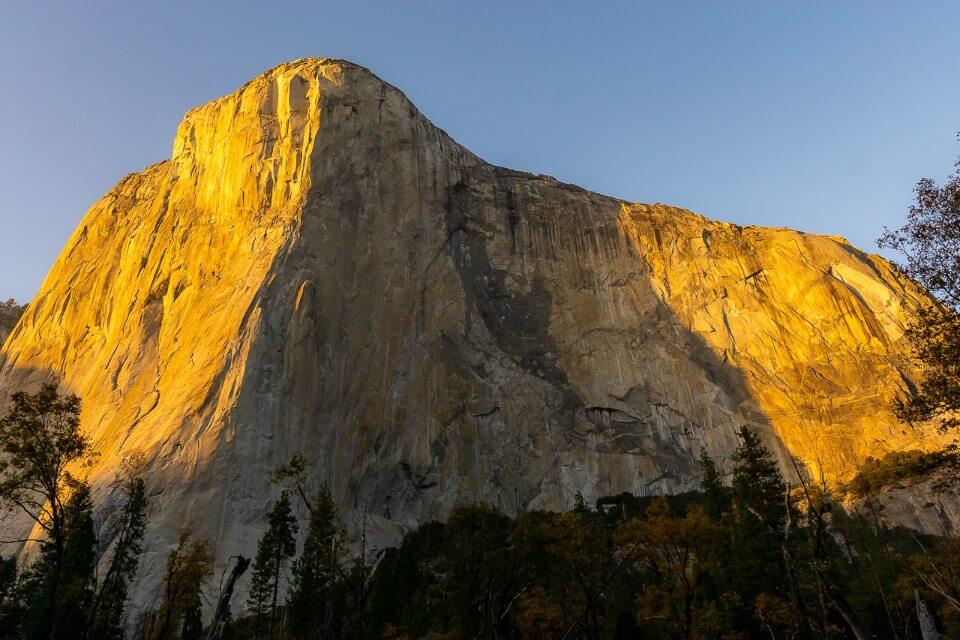 El Capitan illuminating at sunrise bright yellow sunlight warming up the rock Yosemite national park california