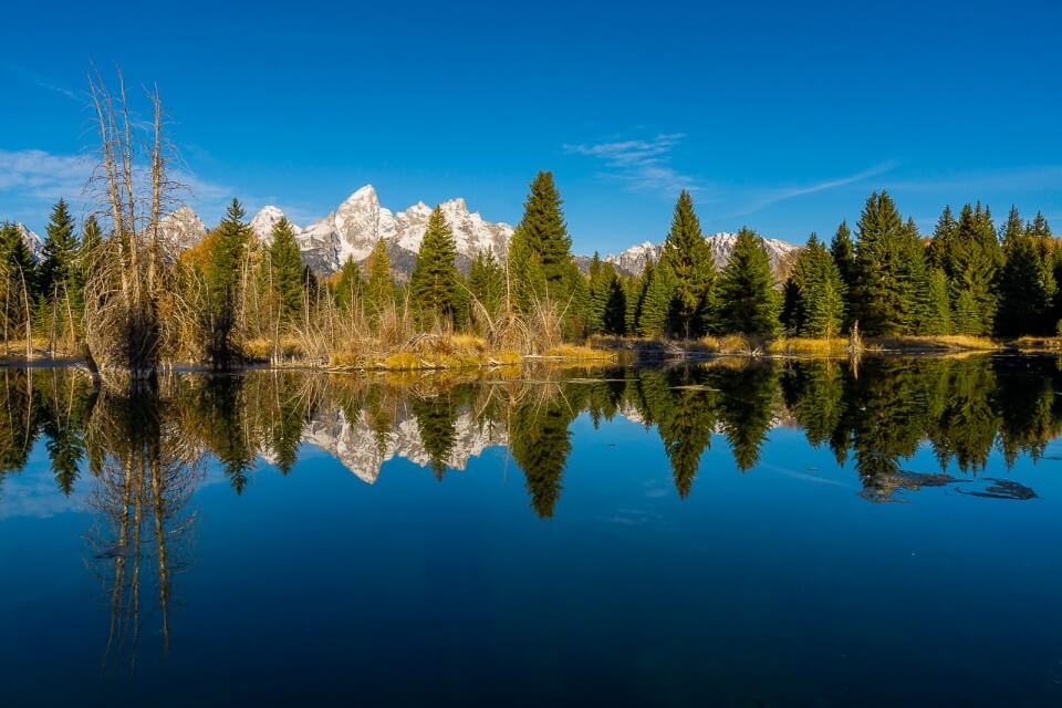 Schwabachers landing mountains and trees reflecting superbly at sunrise in grand teton national park wyoming usa