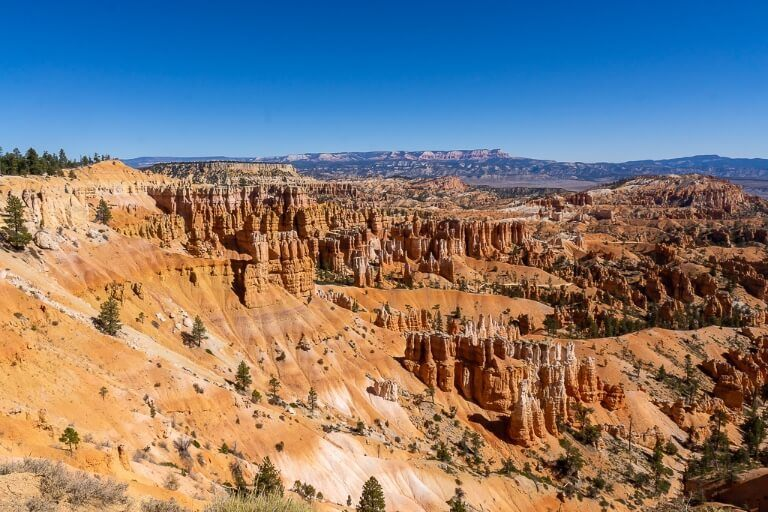 Orange sandstone rocks as far as the horizon in utah