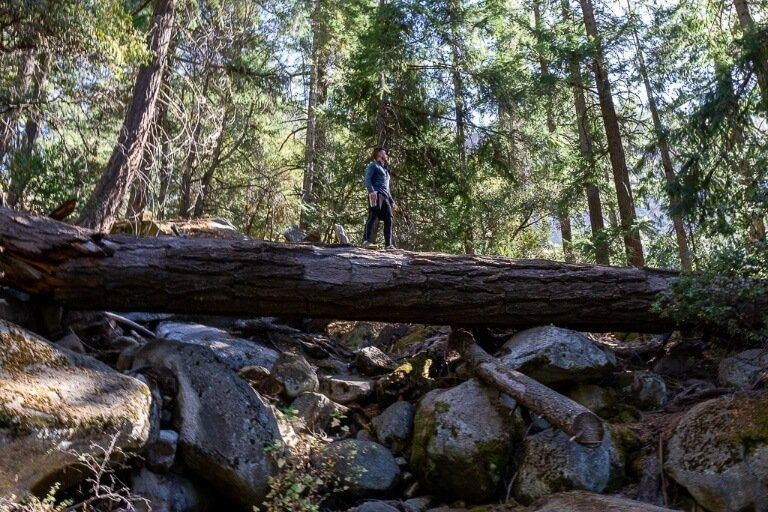 Mark standing on a fallen log on the hike to nevada fall