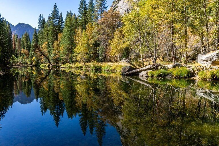 Stunning colorful fall foliage trees reflecting in Merced river in Yosemite National Park gorgeous photography opportunity