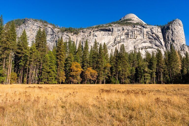 Stunning photography in Yosemite Valley of meadows with trees and granite domes blue sky background