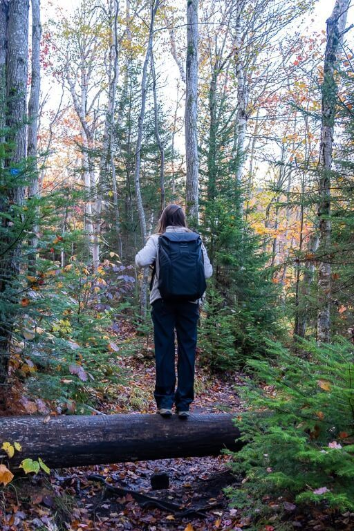 Woman standing on tree with peak design backpack in a forest