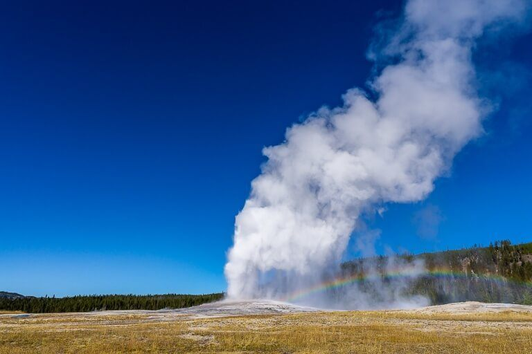Old Faithful geyser erupting white steam against a deep blue sky and rainbow appearing