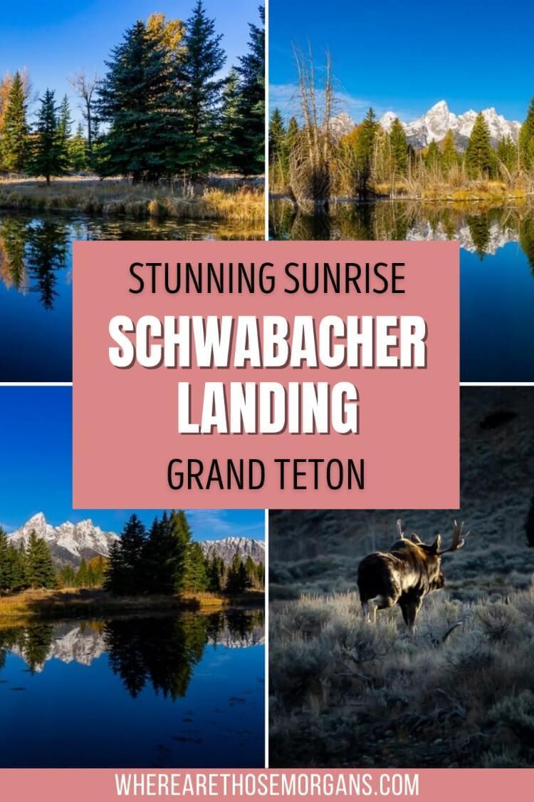 Stunning sunrise photography Schwabacher landing Grand Teton