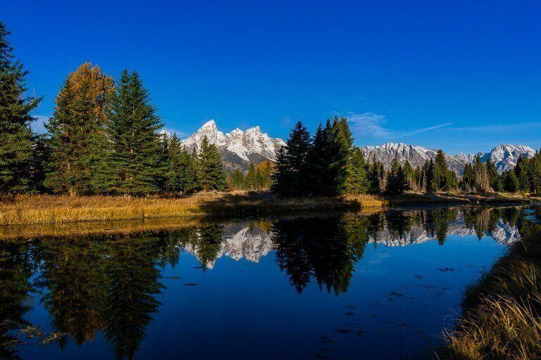 Trees and mountains reflecting in snake river in wyoming