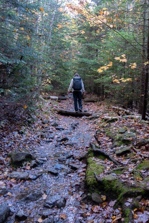 Woman walking on trail along rocks and boulders in lake placid new york