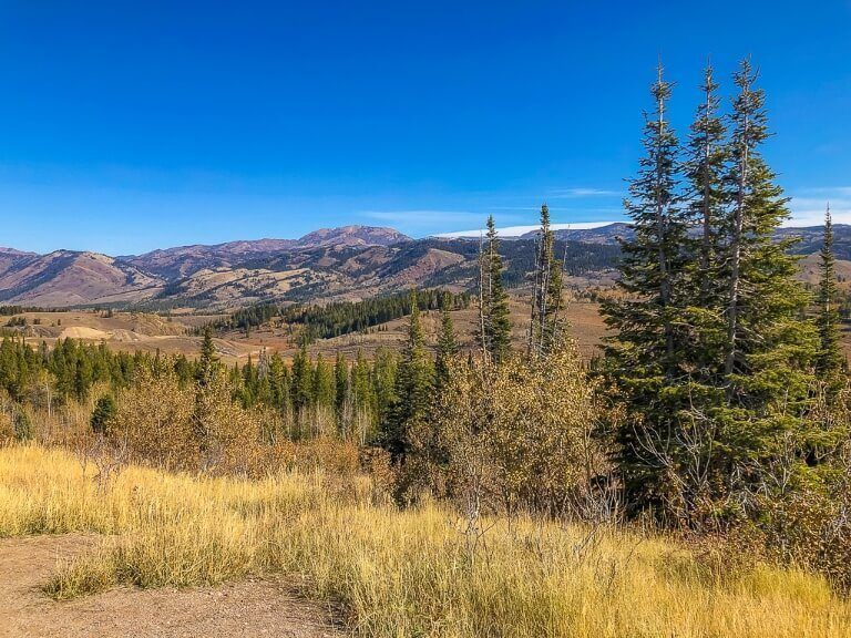 US-89 scenic highway between salt lake city afton snake river and jackson wyoming on a yellowstone road trip itinerary
