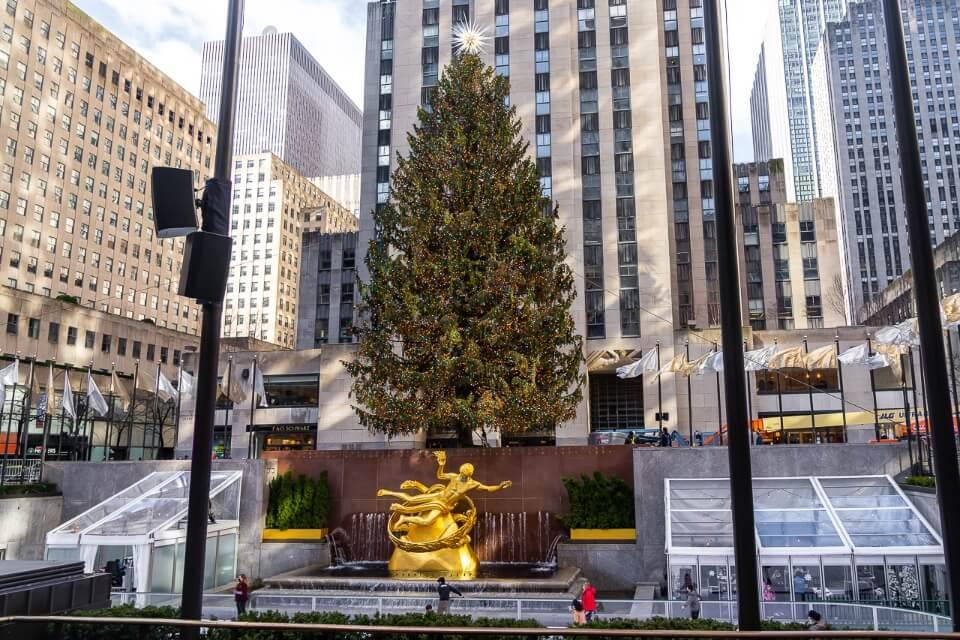 Rockefeller christmas tree in front of rockefeller center in middle of day
