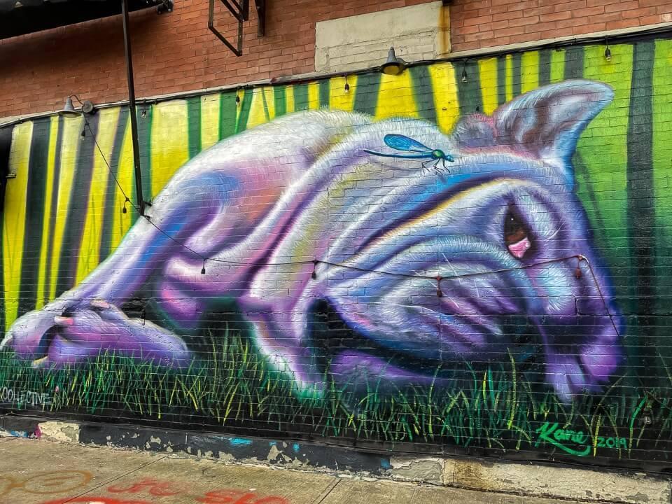 Bushwick Collective Art Streets in Brooklyn French Bulldog purple
