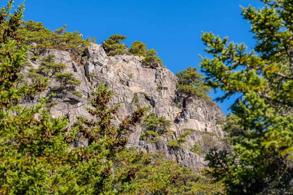 Acadia Beehive Trail Granite Rock Face Cliff Edge Hike Iron Ladder Rungs and Hikers from Afar surrounded by trees