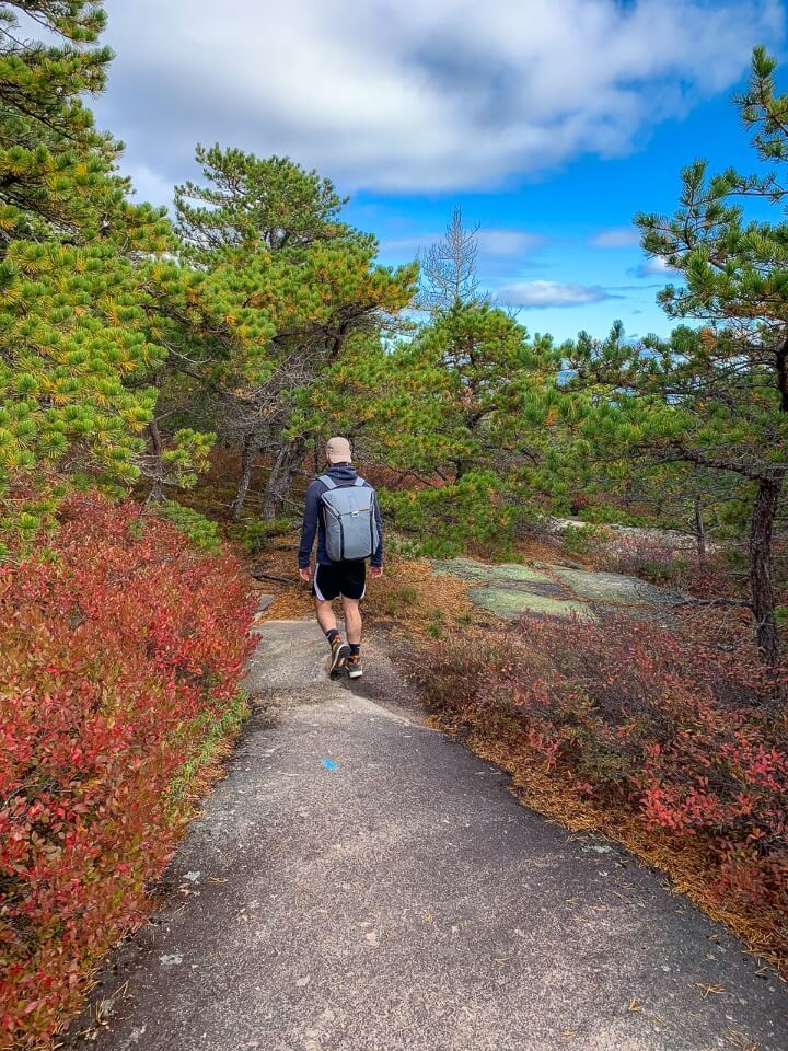 Man walking to summit of precipice trail hike in acadia national park through beautifully colored leaves in Fall