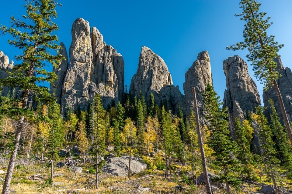 Cathedral Spires hike granite rocks green and yellow trees in black hills national forest south dakota