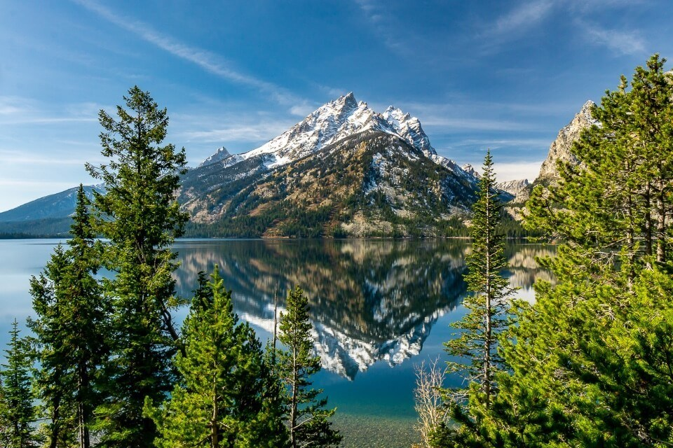 Jenny Lake incredibly beautiful mountain reflection and trees foreground