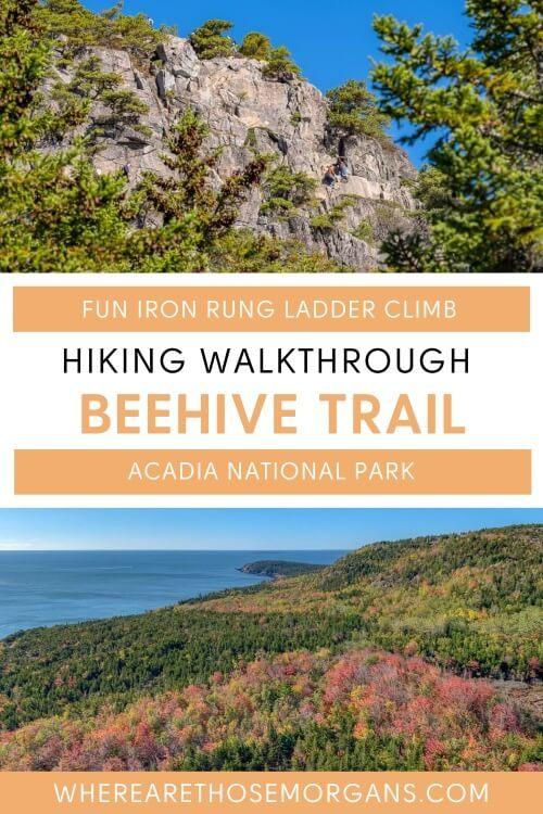 Fun iron rung ladder climb hiking walkthrough beehive trail acadia national park